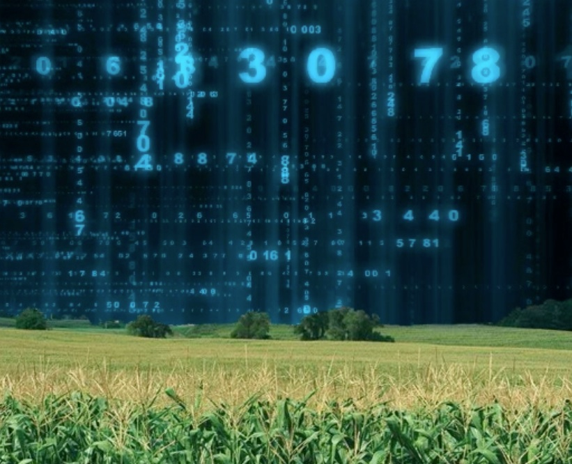 Building Big Data: Farming Big Data Goes To The Cows