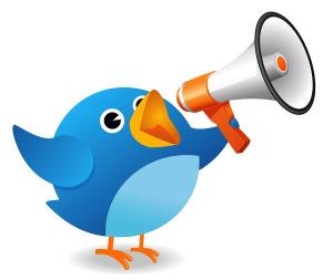 Social Media Twitter Ads for business