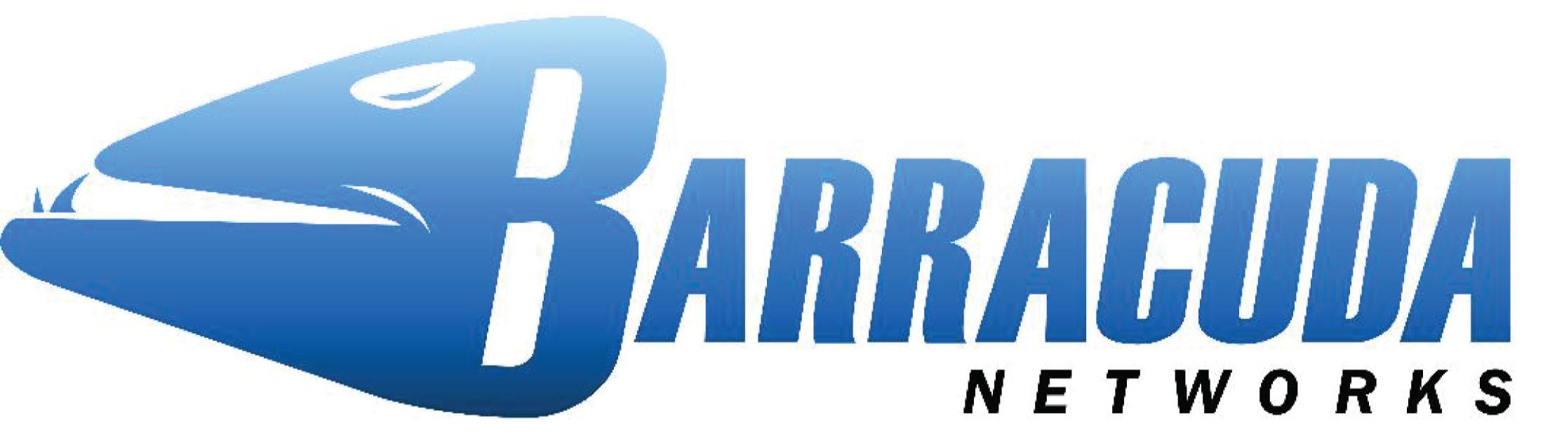 Matt Schilling Blog Earnings Preview Barracuda Networks Talkmarkets