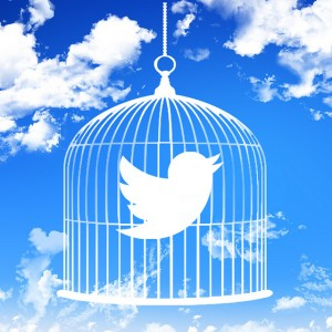 twitter bird caged cloud