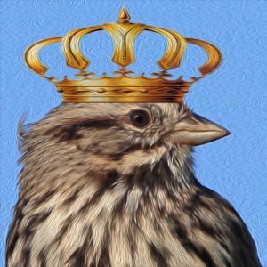 twitter crown bird monarchy tweet
