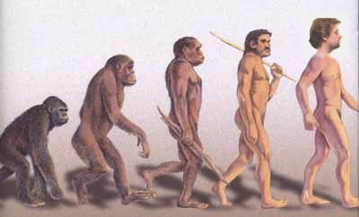 Beware the third IT platform revolution myth