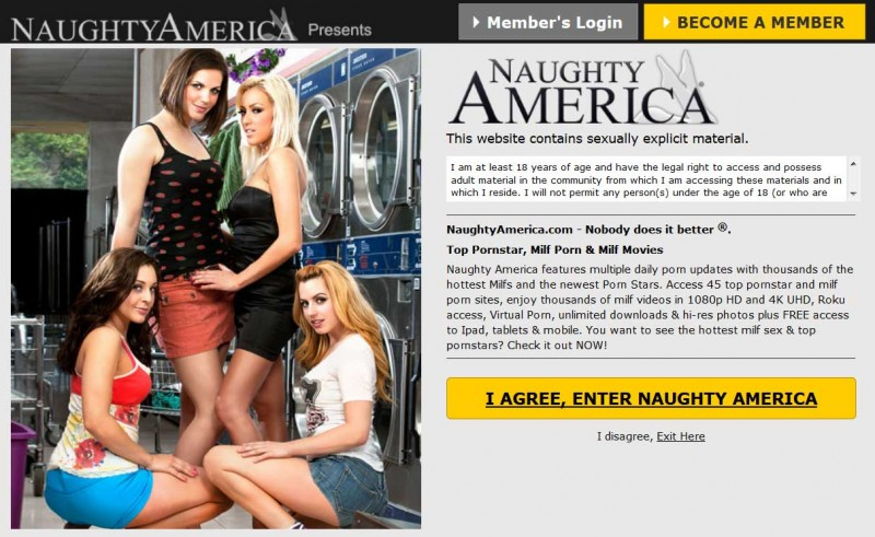 Naughty America Bringing The Bitcoin Back Showing An Unexpected Link Between Vr Pornography