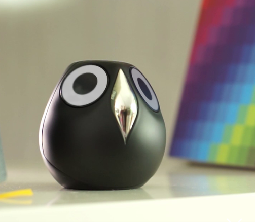 Cute Names Serious Security Newest Smart Home Cameras