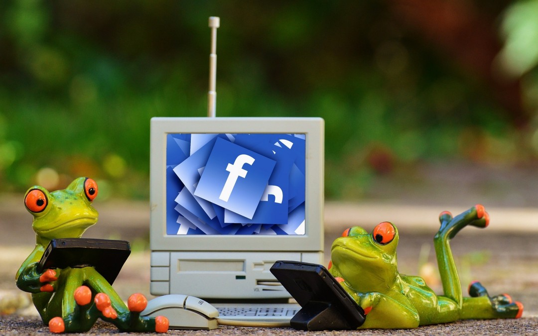 Facebook's open-source software blitz hits new heights in 2015